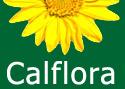CalFlora Logo